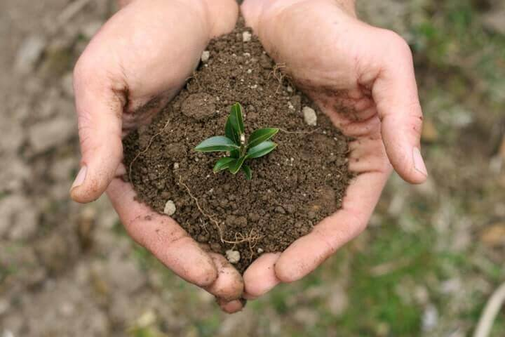 Preconception Health: Nourish The Soil Before You Plant The Seed