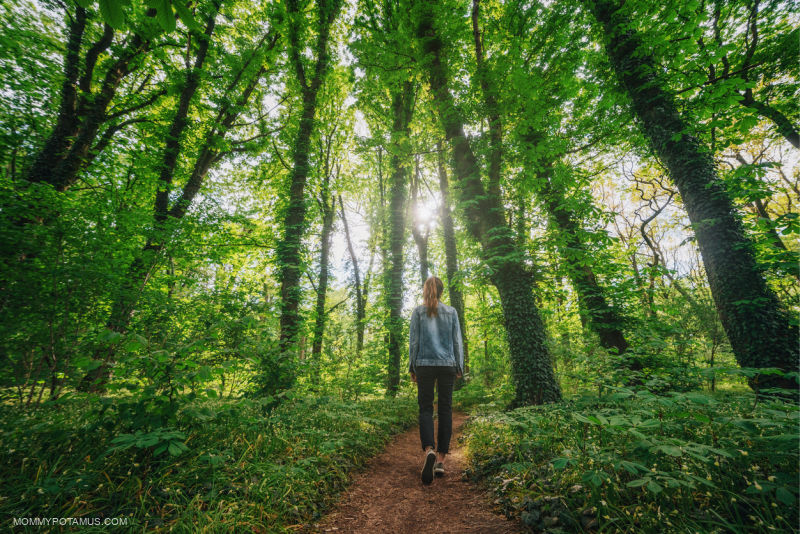 Woman forest bathing