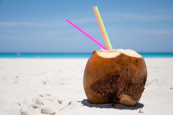 coconuts are difficult to crack and shred