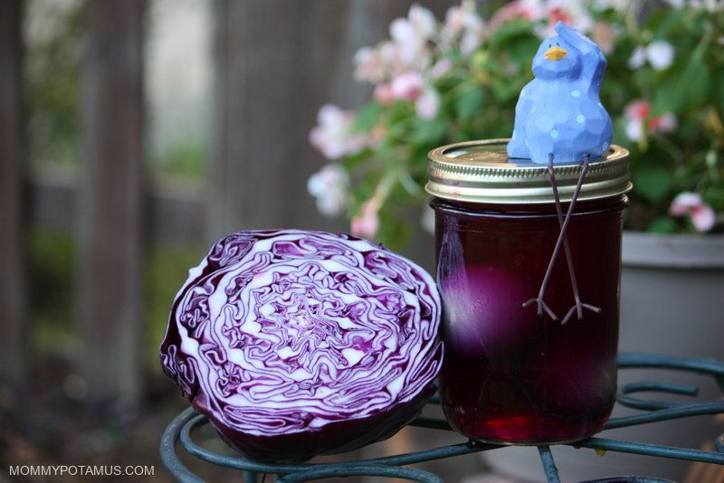 natural-easter-egg-dye-purple-cabbage