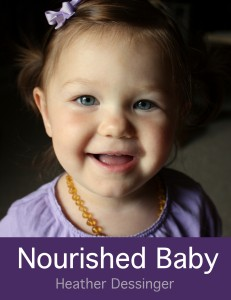 Nourished Baby 2nd Edition by Mommypotamus on Real Food Girl Unmodified
