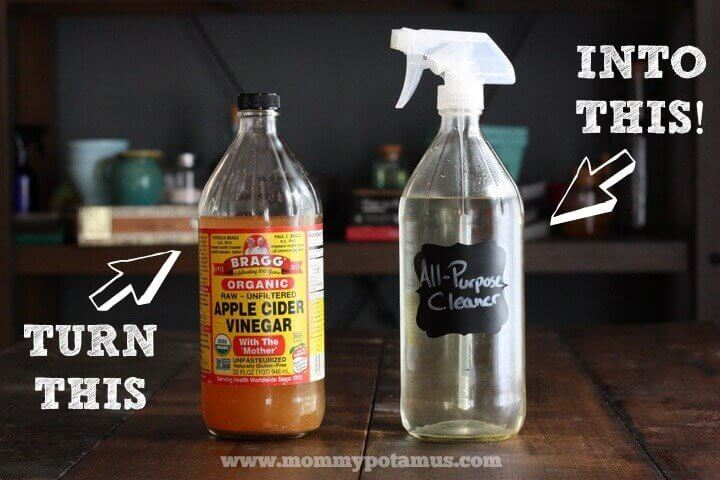 Diy All Purpose Cleaner Plus How To Make A Glass Spray