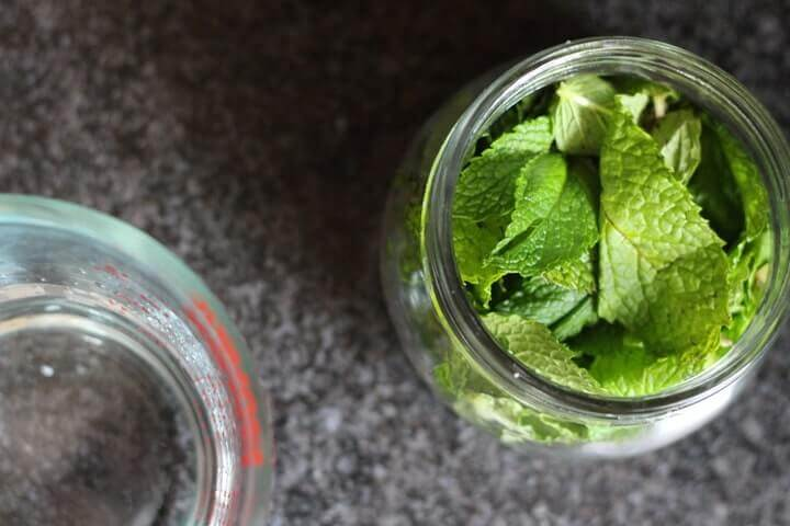 Mint Extract Recipe - Mint Extract Recipe - Ohhh, I'm going to add a minty twist to my favorite brownies, chocolate pudding, ice cream, hot chocolate or tea! This two-ingredient mint extract recipe looks so easy.
