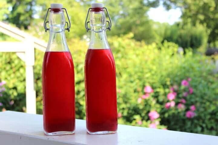 Lacto-Fermented Raspberry Soda Recipe