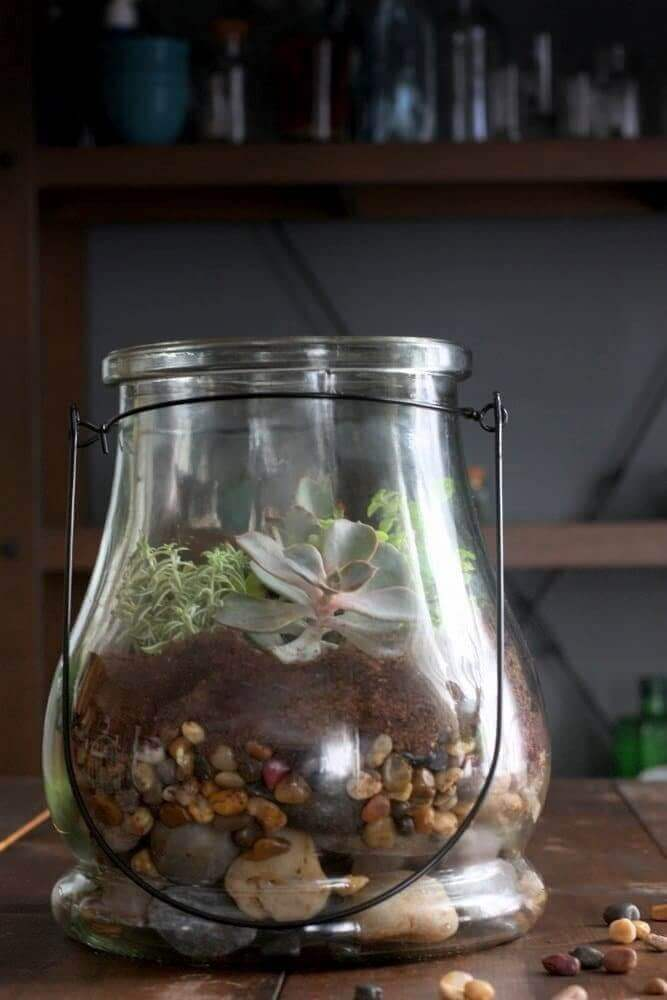 how-to-make-succulent-terrarium1
