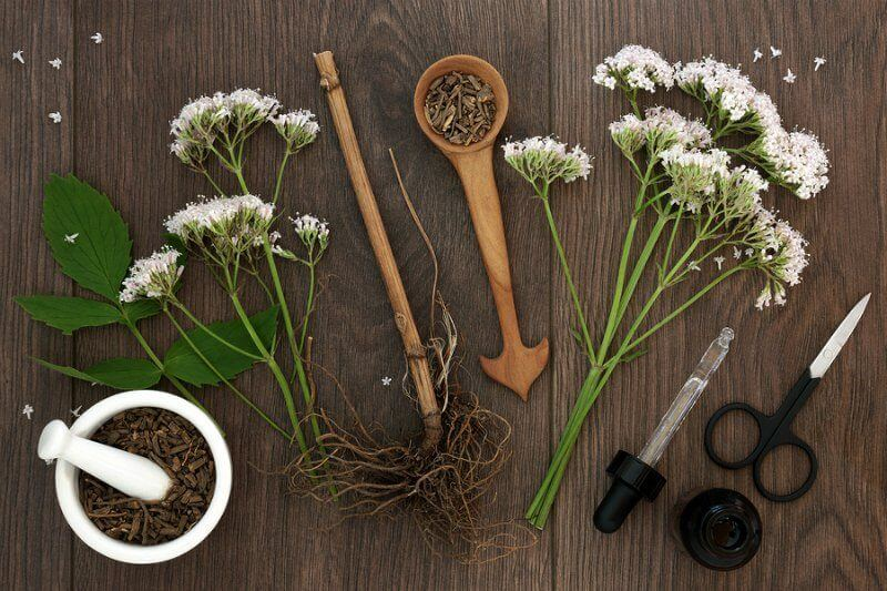 Valerian root and flowers