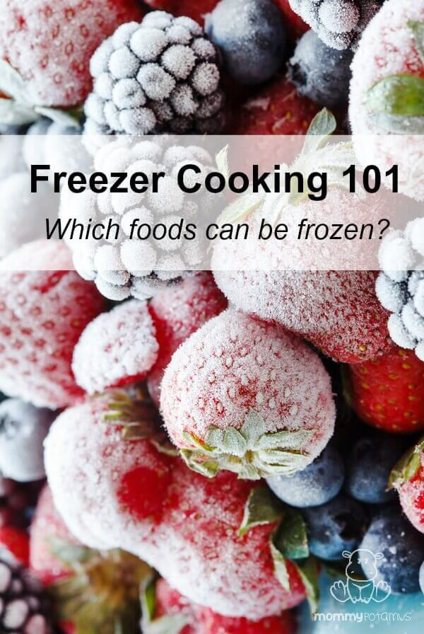 Freezer Cooking 101: Which foods can be frozen?