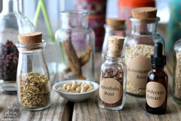 The Beginner's Guide To Adaptogens
