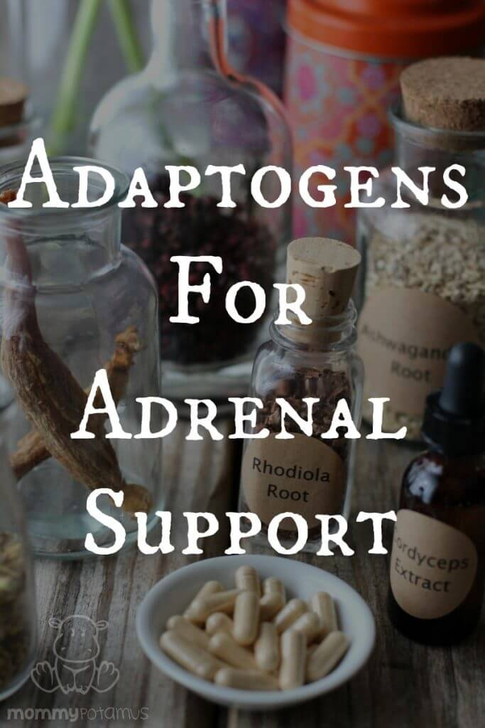 Adaptogens For Adrenal Support