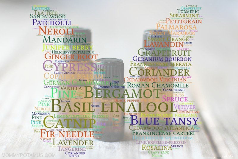 Essential oil bottles overlapped with text names of kid-safe essential oils