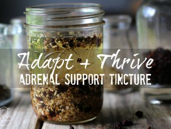 adrenal-support-tincture