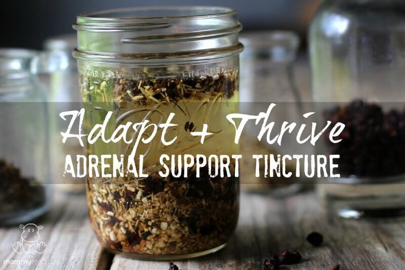 adrenal support tincture