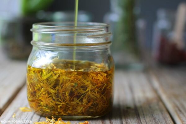 How To Make Calendula Oil (And 5 Ways To Use It)