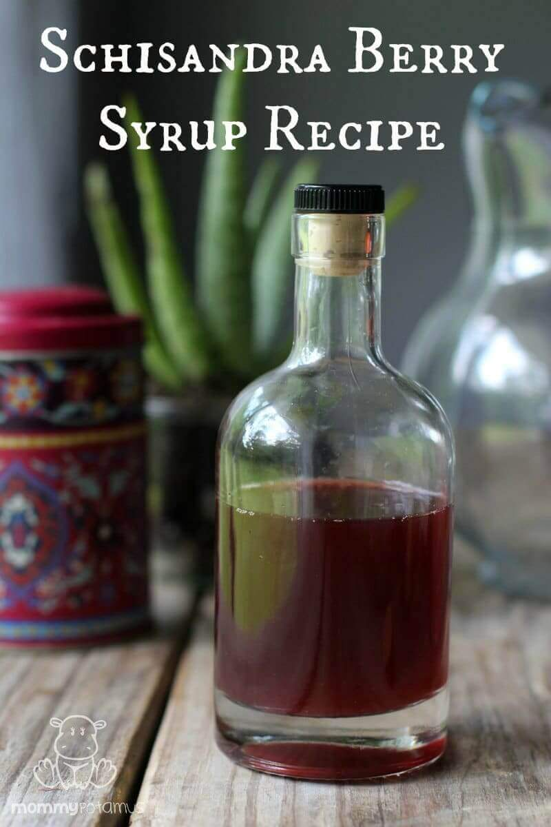 schizandra-berry-syrup-recipe-1