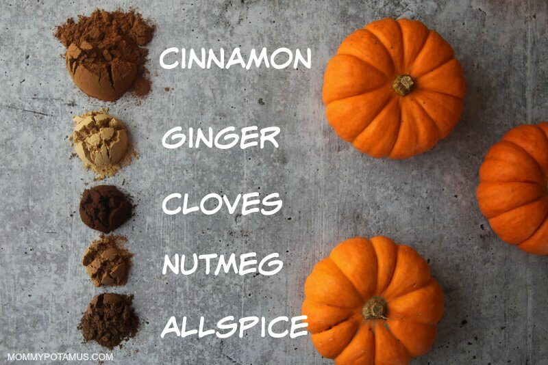 Pumpkin pie spice ingredients on table: Cinnamon, ginger, cloves, nutmeg, allspice