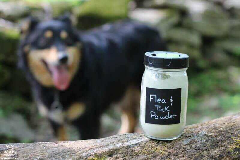 diatomaceous earth flea tick repellent dogs