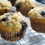 Muffins de Mirtilo Fáceis (Sem Glúten, Paleo) 2