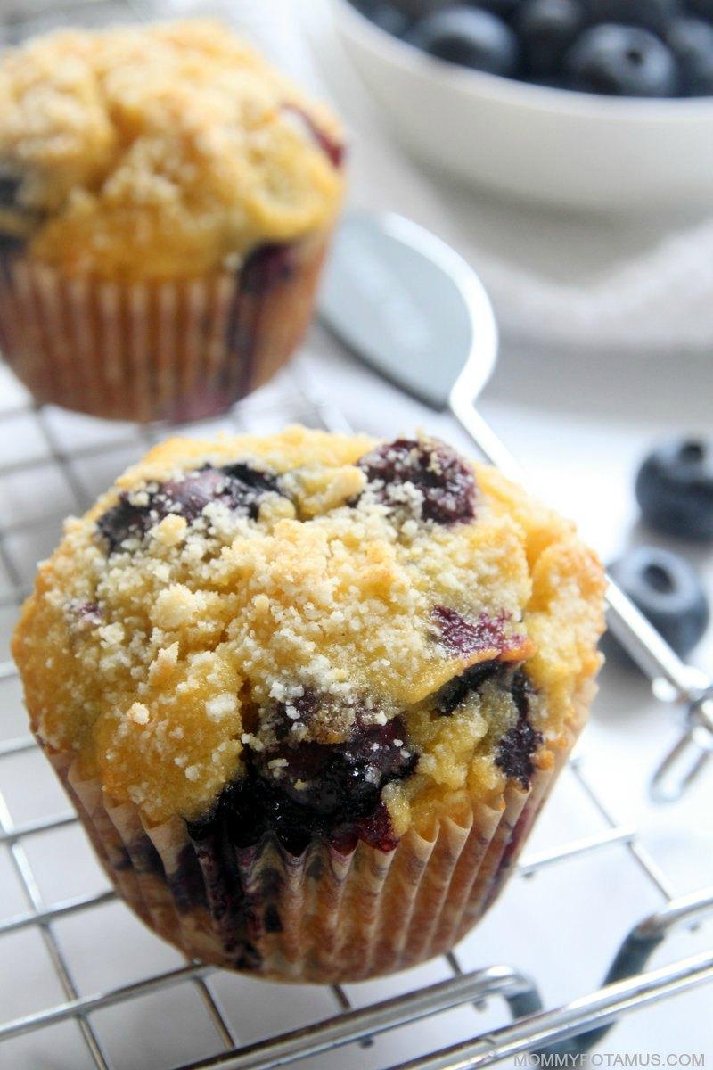 Easy Blueberry Muffins Gluten Free Paleo