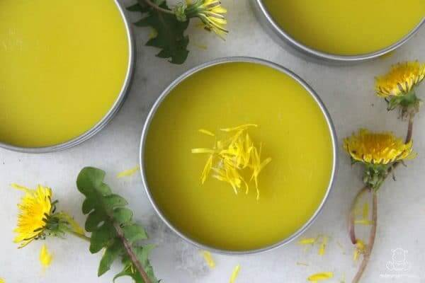 Homemade Dandelion Salve Recipe