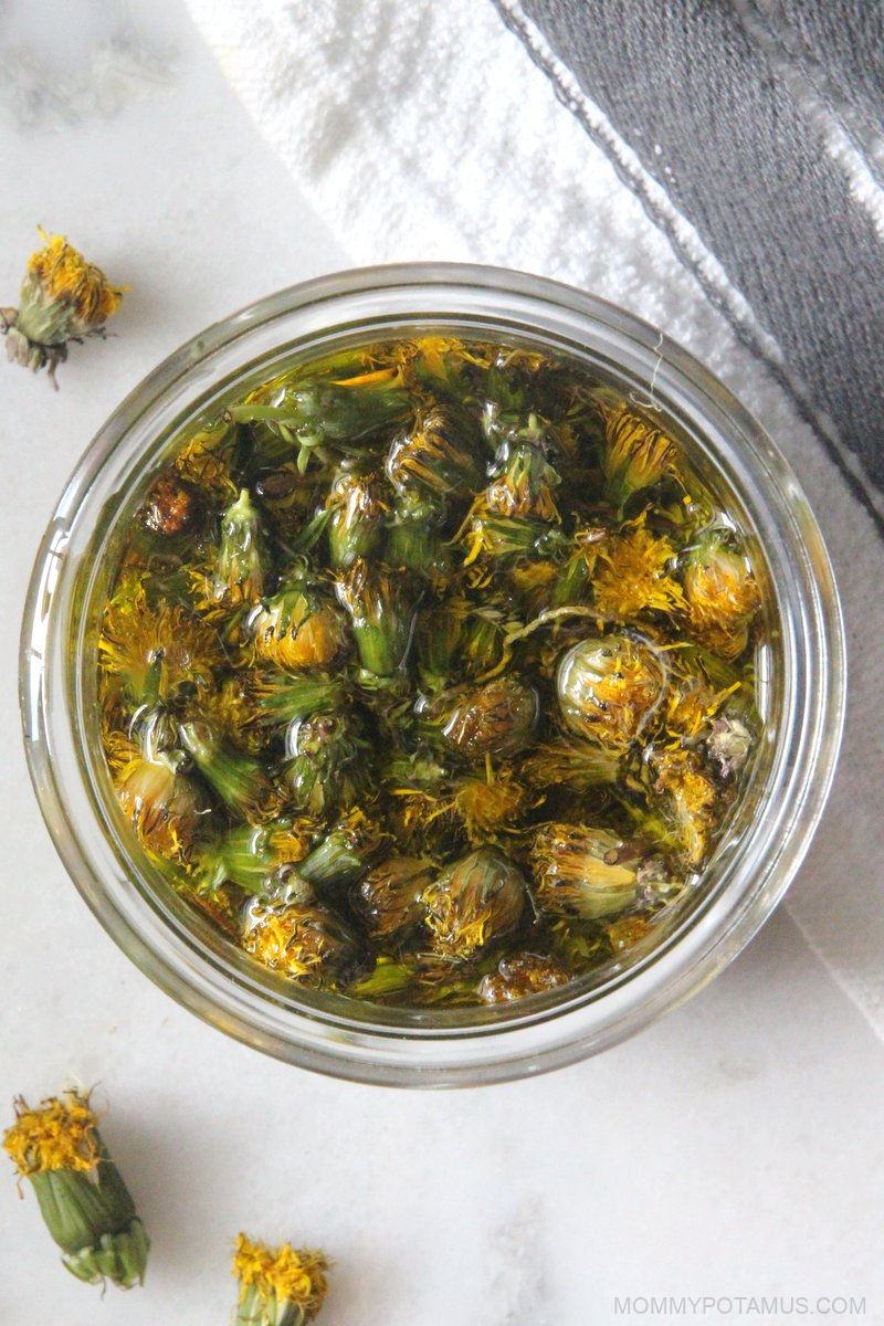 How To Make Dandelion Oil (And 5 Ways To Use It)
