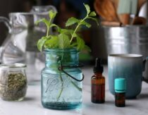 8 Lemon Balm Benefits + Easy Recipes for Tea, Tincture & More
