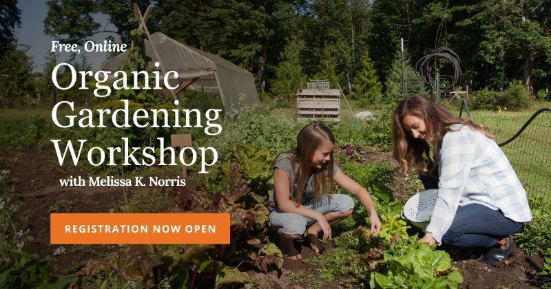 SIgnup button for free organic garden class