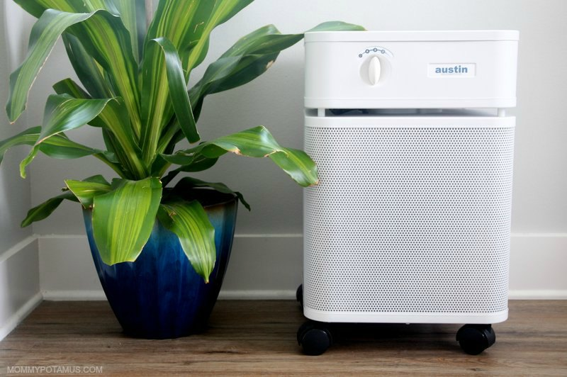Austin Air Purifier next to houseplant