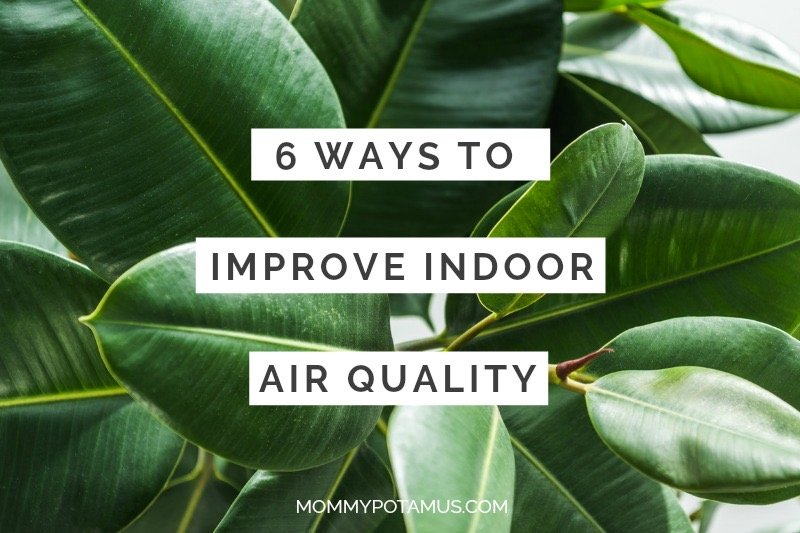 "Fresh leaves with text that says ""6 Ways To Improve Indoor Air Quality"""