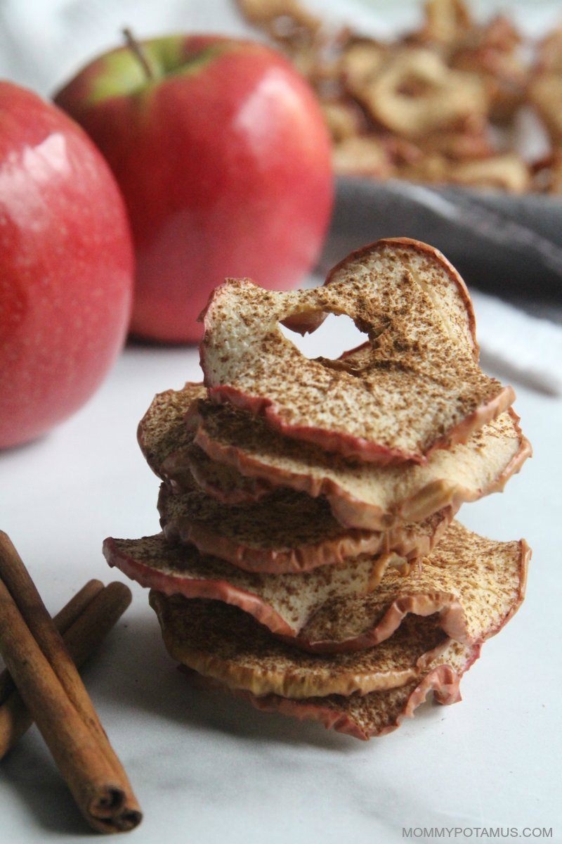 Stacked cinnamon apple chips