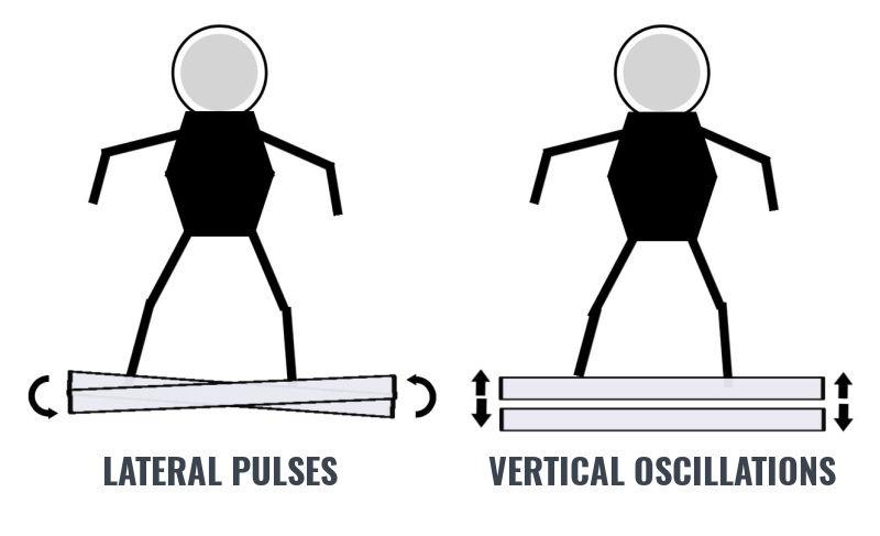whole body vibration training types
