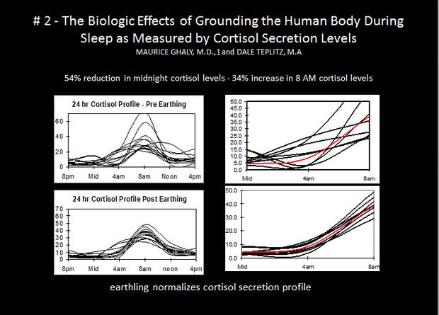 cortisol profiles