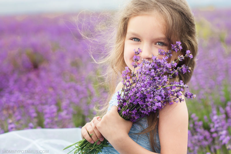 Young girl holding lavender