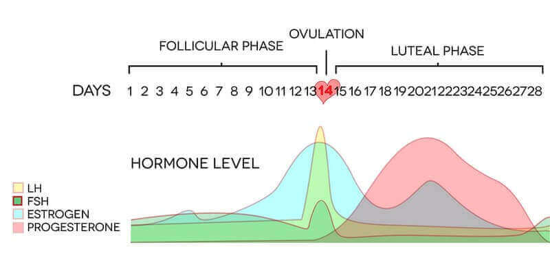 symptoms hormone imbalance